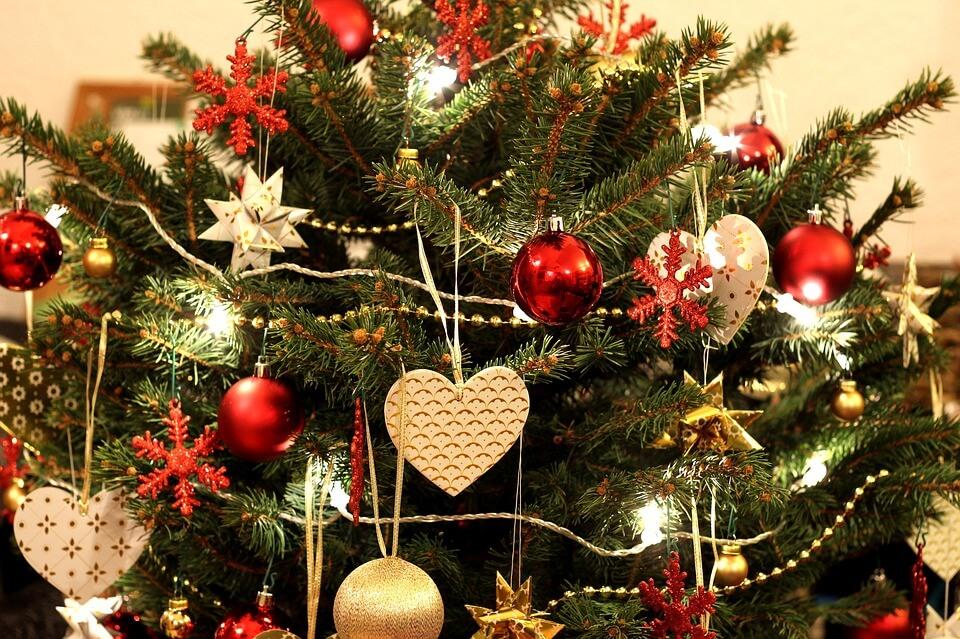 Weihnachtsbaum Pflegen: Tipps & Tricks Für Einen Frischen