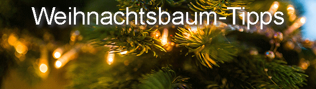 weihnachtsbaum so h lt er l nger geheimtipps. Black Bedroom Furniture Sets. Home Design Ideas
