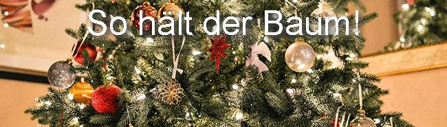 Weihnachtsbaum vor dem aufstellen anschneiden