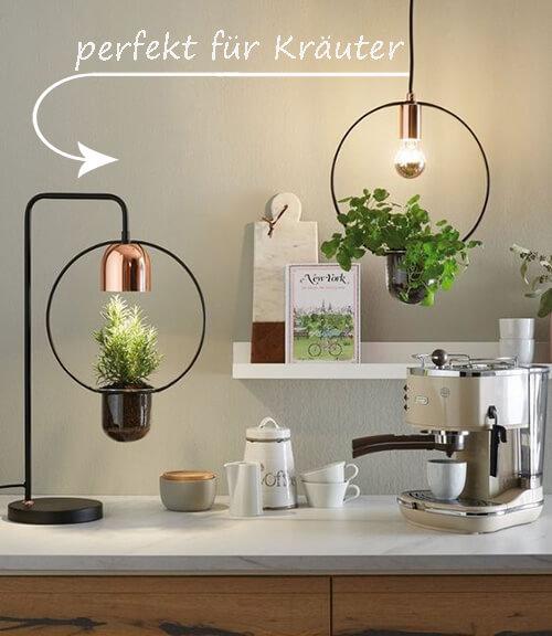 schick: Kräuter-Lampe
