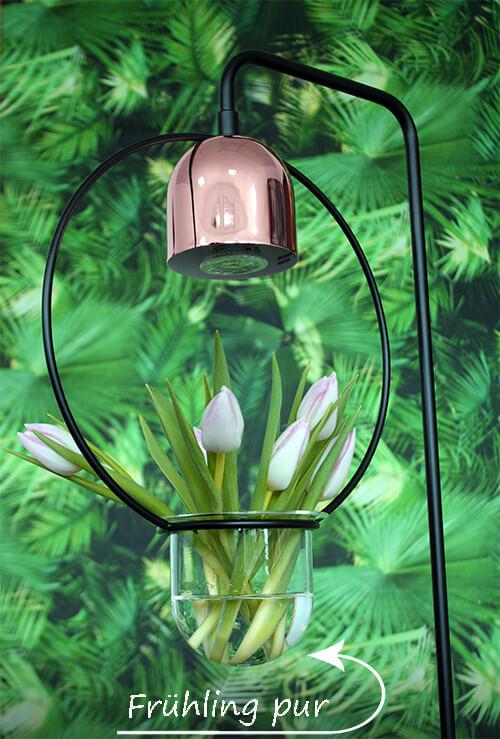Sukkulenten-Lampe mit Deko