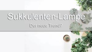 Sukkulenten-Lampe: neuer Trend?