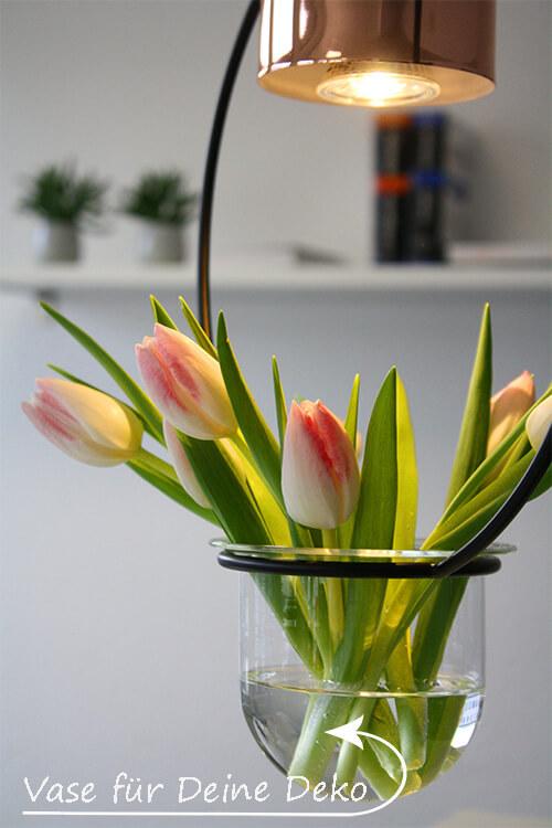 Sukkulenten-Lampe mit Vase