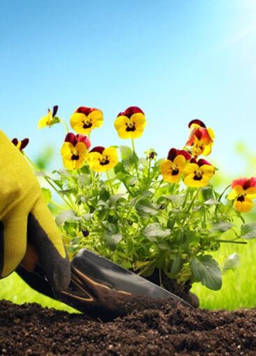 Entdecken Sie unsere Garten & Freizeit Artikel
