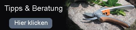 Gartenschere Tipps Beratung