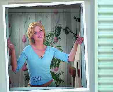 schellenberg insektenschutzfenster plus 80x100 100x 120 120 140x150 cm. Black Bedroom Furniture Sets. Home Design Ideas